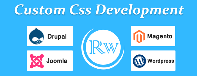 What Is Custom CMS Development?